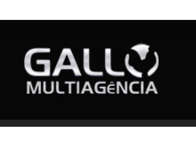 Vaga para Programador Web na Agência Gallo